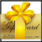 $25 Electronic Gift Card